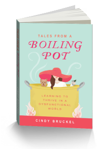 3D Book-Cover - Cindy Bruckel - Tale From a Boiling Pot